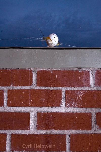 Assassination of Humpty Dumpty