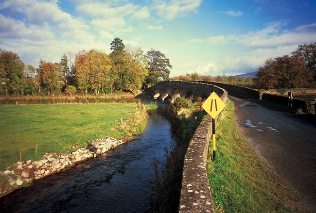 Bridge (IV)