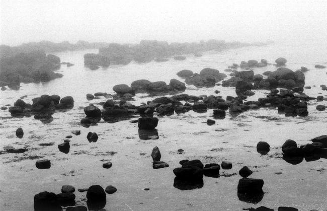 Giant's Causeway (II)